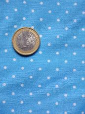 Azzurro micropois bianchi