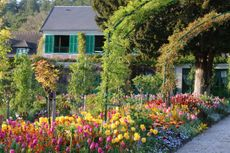 Monet's gardens - Giverny