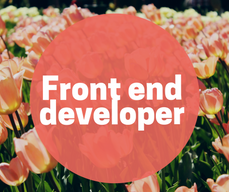 Front end developer