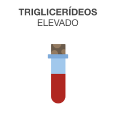 Triglicerídeos elevado