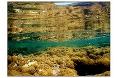Arrecife 2