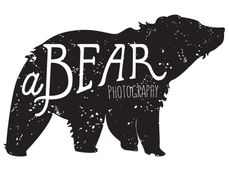 A Bear Photography