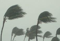 En cyklon (vind).