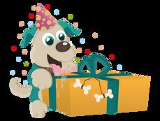 A + Verjaardagsbox voor €35,10 (10% korting)
