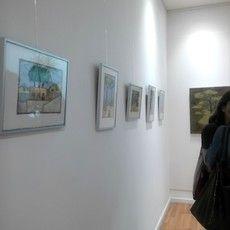 Exposiciones y proyectos