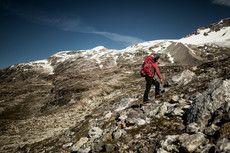 Bjergbestigning/-vandring