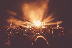live gigs, festivals