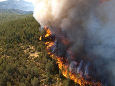 Wildland Fire Prevention