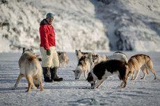 Traditionel kultur (fx livet som fisker/fanger i Grønland)