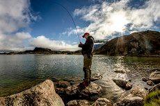 Udfolde en bestemt hobby/passion (elvfiskeri, heliskiing, e.lign.)