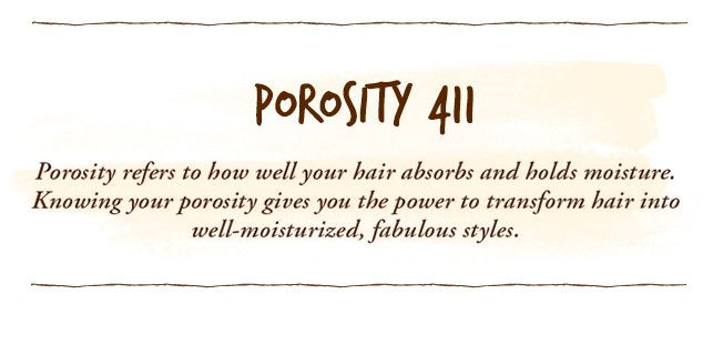 Porosity 411 by sheamoisture what is hair porosity what is porosity urmus Choice Image