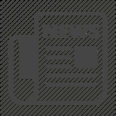 Newsletter/  Blogging Services