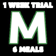 Medium 1 Week Trial (Out of State)