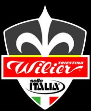 WILIER TRIESTINA SELLE ITALIA
