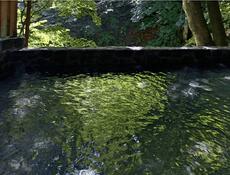 鈴森の湯/温泉について
