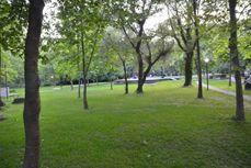 """A walk in the park"" Ανάπλαση χώρου πρασίνου με το WWF GreenSpaces"