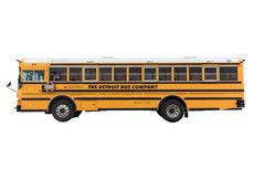 Large Yellow School Bus (48 Adults/72 Kids)