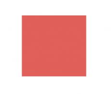 Criação de site (Front end e programação)