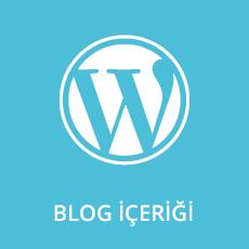 Blog İçeriği