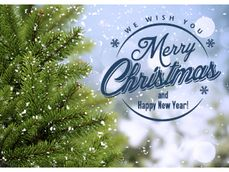 Merry Christmas with pine tree and blue text