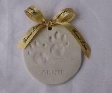 Small paw print (approx 10 cm diameter)