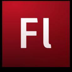 Adobe Flash CS3 Pro