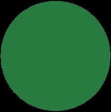 Mörkgrön (RAL 6005)
