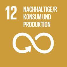 Nachhaltige Konsum- und Produktionsweisen