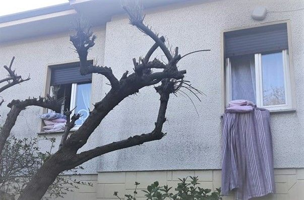 Afbeelding voor vraag Ik hang mijn beddengoed uit het raam om te luchten.