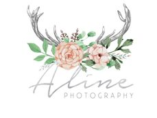 Aline Photography