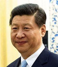 Xi Jinping, Kina
