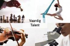 Vaardig / Talent