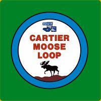 Cartier Moose Loop