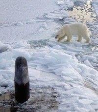 Ubåt till Nordpolen
