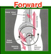Hips Forward/Straight