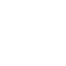 Custom Tech