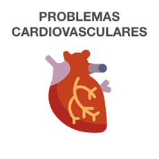 Outros Problemas Cardíacos