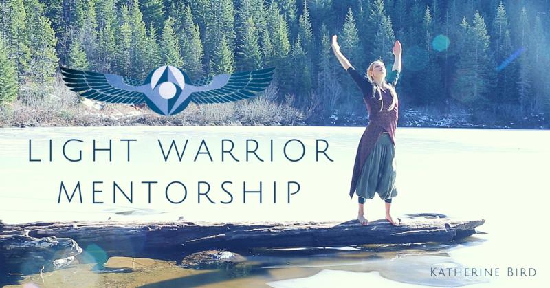 Light Warrior Scholarship Interest Form