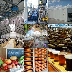 Food, BioTech & Bio-Based Economy
