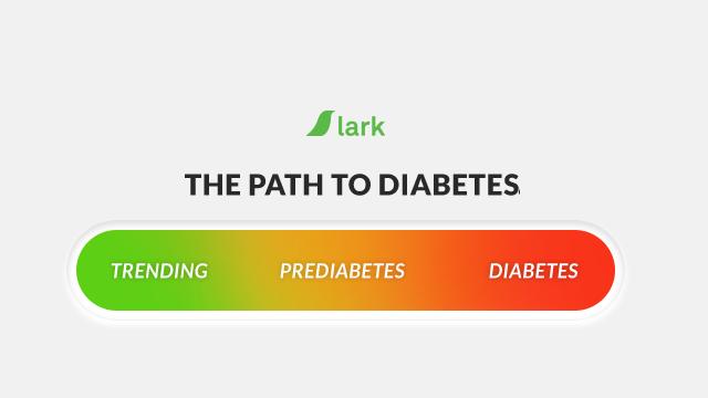 2018 Best Prediabetic Diet with Prediabetes Diet Plan and
