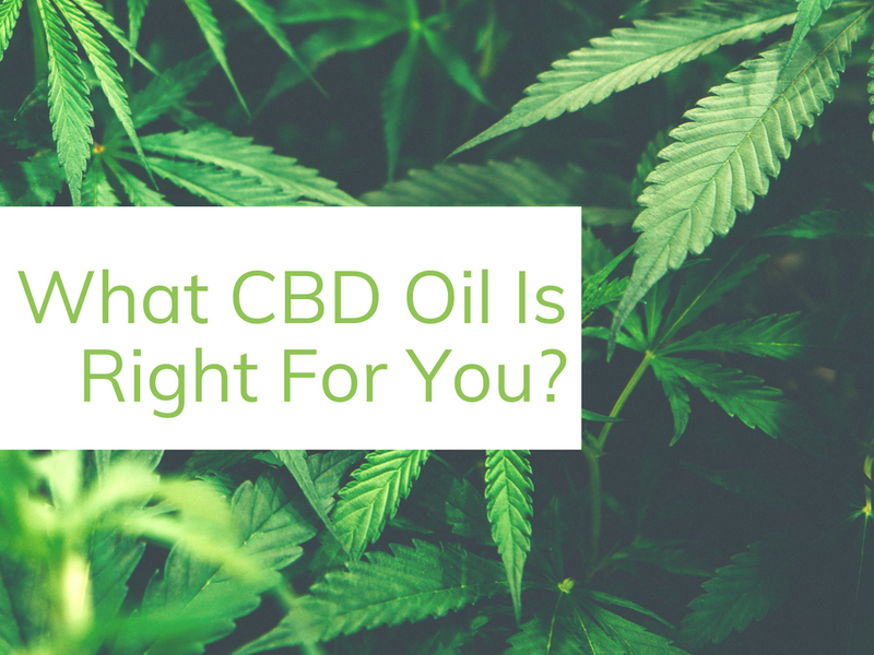 34 Best CBD Products - Find The Best CBD Oil For You | HHO