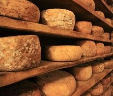 Enter our cheese cellar