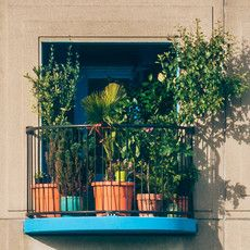 Window box, balcony