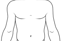 Shoulders/Upper Arms/Torso Front