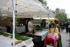 Culinary pop-up market, Union Square, New York, NY