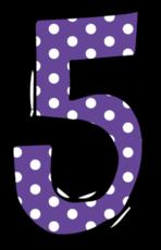 5º ano