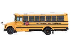 Medium Yellow School Bus (24 Adults/36 Kids)